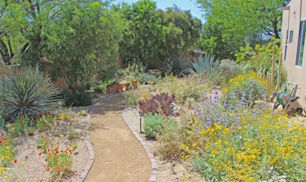 beautiful sustainable landscapes