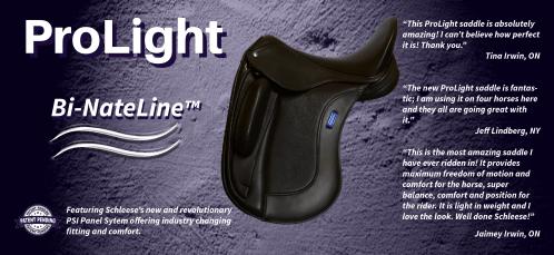small resolution of bi nateline saddles