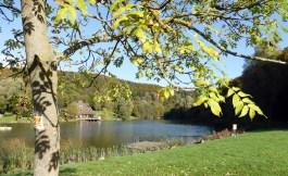 Waldseepfad Rieden (1)