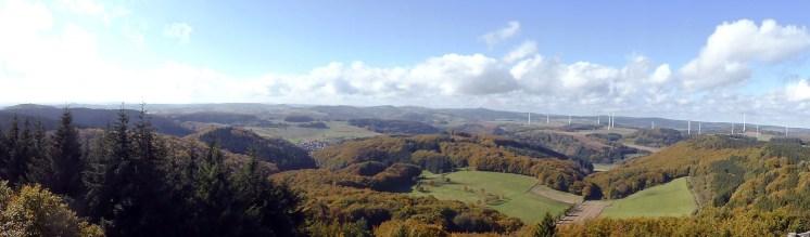 Waldseepfad Rieden (6)