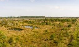 Nordpfad Hovenhoopsmoor (18)
