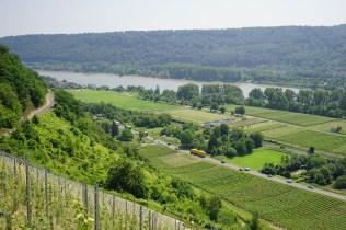 Leutesdorf und Rheinsteig (35)
