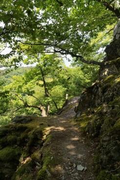 Felsenpfad in der Caaner Schweiz