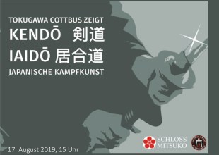 Thumbnail for the post titled: Kendo und Iaido mit Workshop