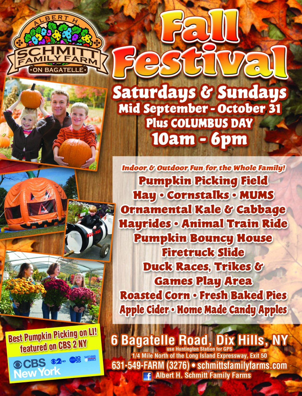 Fall Festival Flyer Page