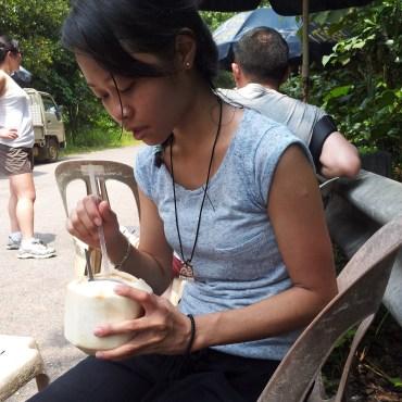 Pulau Ubin Coconut