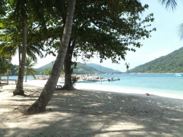 Pulau Redang Shore Near Jetty