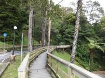 Mount Kinabalu Wooden Pathway