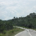 Winding Road to Kinabatangan from Sepilok