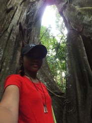 Me with the Oldest and Biggest Tree during Morning Jungle Trekking in Kampung Sukau Forest near Sukau Evergreen Lodge Kinabatangan