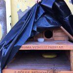 Explore Canakkale, Turkey – Street Kedi aka Street Cats House Covered