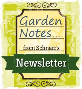 Garden Notes from Scharr's Newsletter