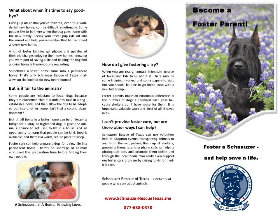 srt foster brochure final outside