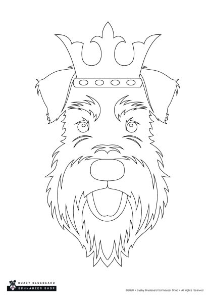 Christmas colouring pack - king