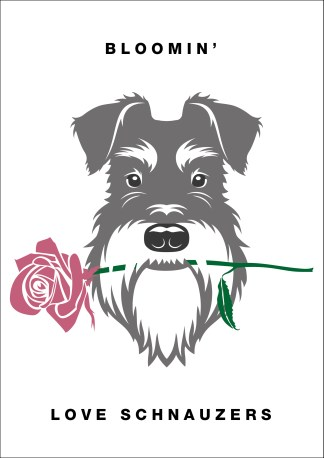 Blooming' love schnauzers poster salt and pepper