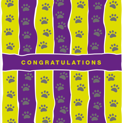 greetings card congratulations in purple and yellow stripe