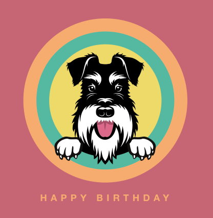 birthday card coral background silver and black schnauzer