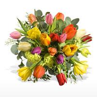 BlumenSchneider  Blumen Wohnaccessoires Hildesheim