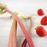 Rhabarber-Erdbeer-Marmelade mit Vanille & Minze