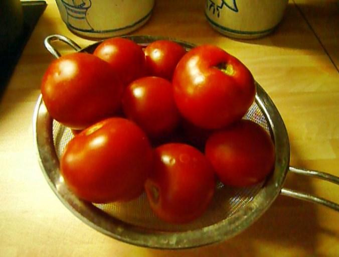 Gnocchi mit Tomatensoße-31.8.14   (17)