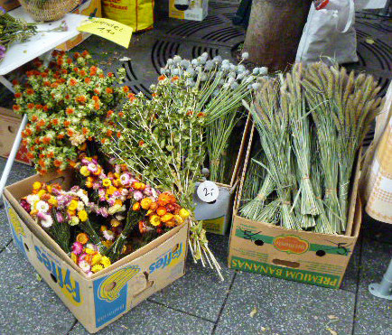 Zwiebelmarkt2 -10.10.14 (16)