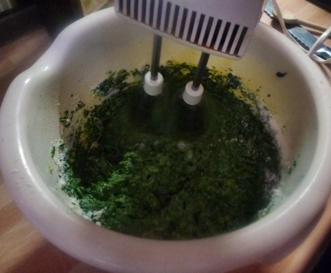 Spinat,Ricotta,Gnocchis,überbacken - 1.4.15 (8)