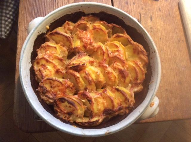 8.1.16  -  Kartoffelgratin,Pak Choi,Endiviensalat,vegetarisch (1)