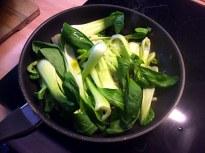8.1.16 - Kartoffelgratin,Pak Choi,Endiviensalat,vegetarisch (11)