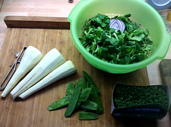 Pastinaken,Kartoffelstampf,Feldsalat,vegetarisch - 2.1.16 (3)