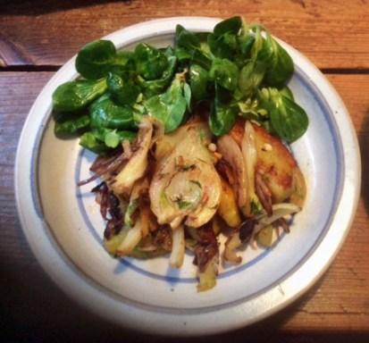 20.2.16 - Fenchel,Zwiebel,Kartoffel,Salat,vegan, (15)
