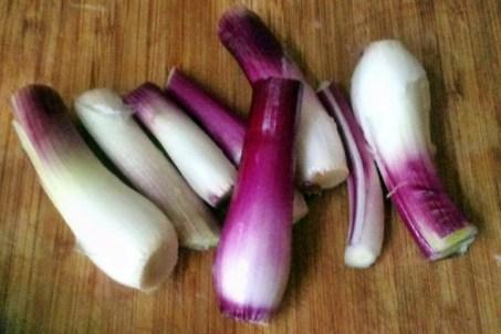 20.2.16 - Fenchel,Zwiebel,Kartoffel,Salat,vegan, (3)