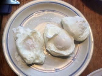23.2.16 - Kartoffeltaler,Salate,pochiertes Ei,vegetarisch (9)