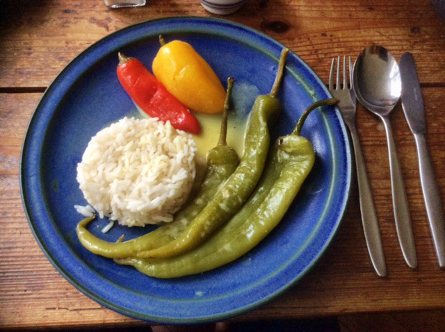 24.2.16 - Geschmorte Pepperoni,Reis,vegetarisch (1)