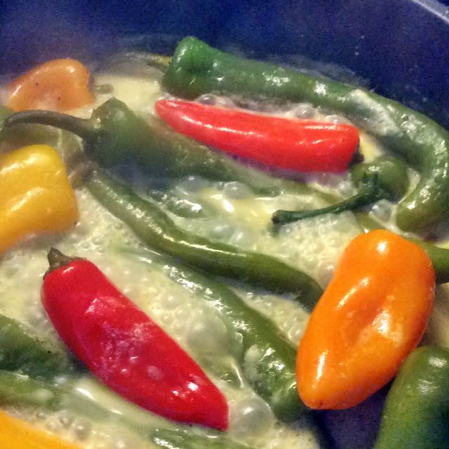24.2.16 - Geschmorte Pepperoni,Reis,vegetarisch (2)