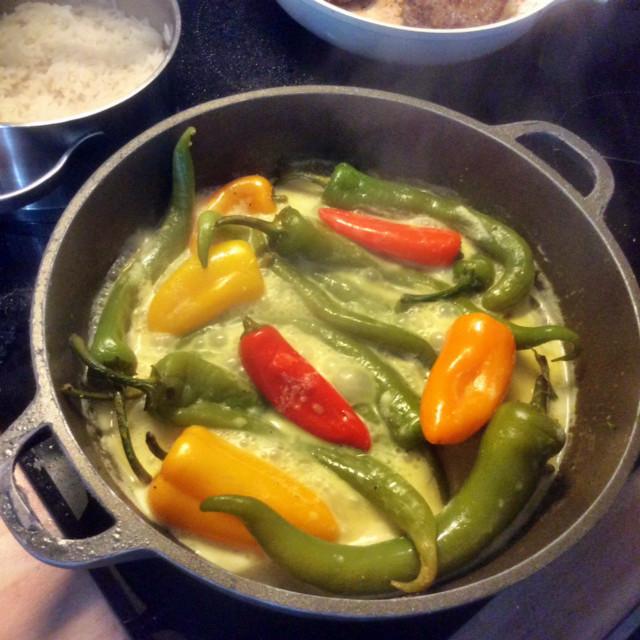 24.2.16 - Geschmorte Pepperoni,Reis,vegetarisch (8) - Kopie