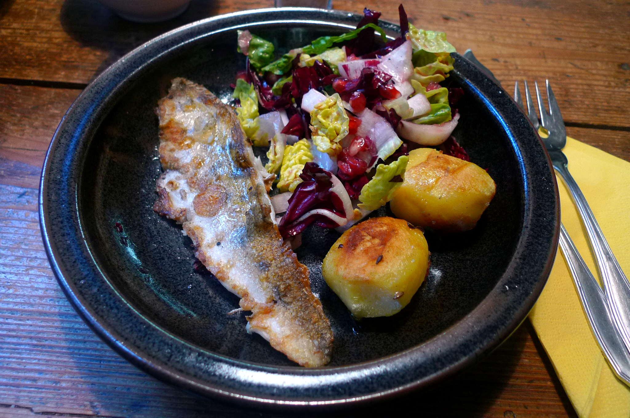 9.2.16 - Zander,Salat,Kartoffel,pescetarisch (1c) (22)