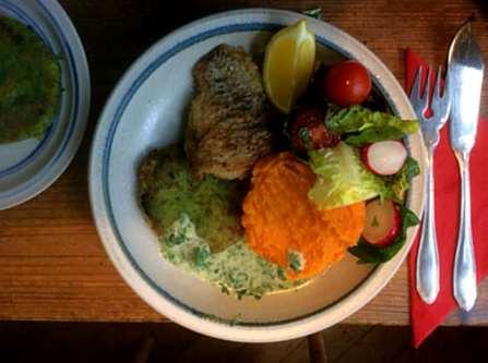 25.3.16 - Rotbarsch,Süßkartoffelpürree,Salat,Petersiliensoße (14)