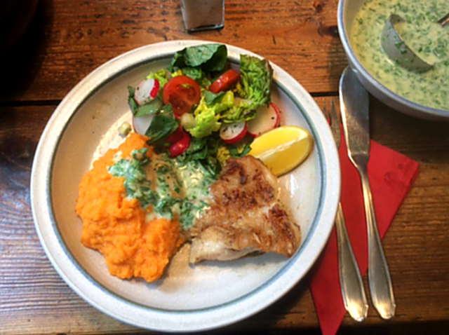 25.3.16 - Rotbarsch,Süßkartoffelpürree,Salat,Petersiliensoße (16)