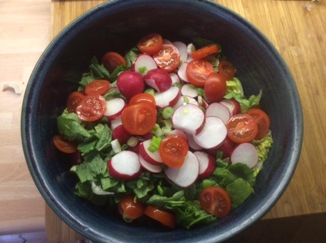 25.3.16 - Rotbarsch,Süßkartoffelpürree,Salat,Petersiliensoße (2)