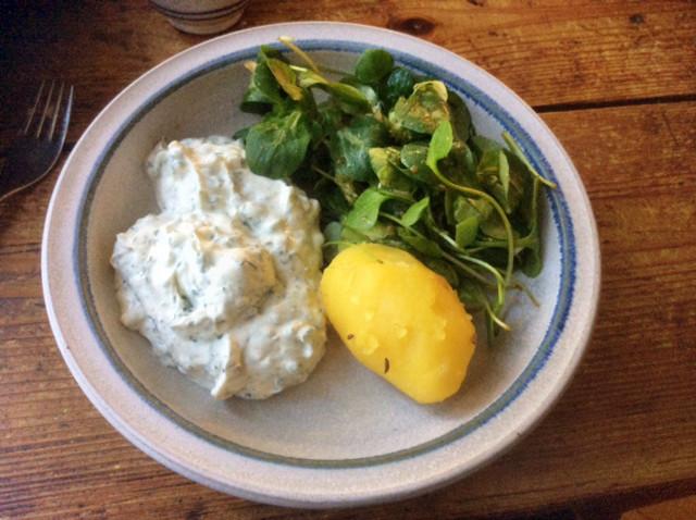 9.3.16 - Quark,Kartoffel,Salat,vegetarisch (2)