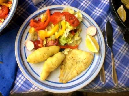 7.5.16 - Schollenfilet,Salaat,Kartoffel,pescetarisch (15)