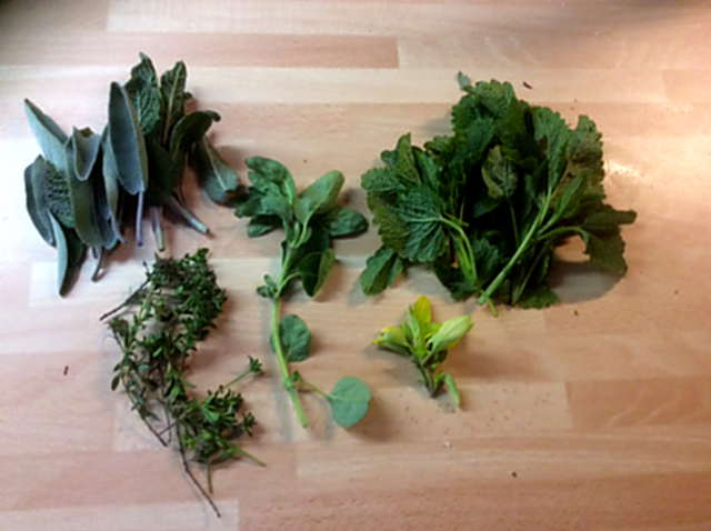 8.5.16 - Nudeln,Salbeiöl,Salat (2)