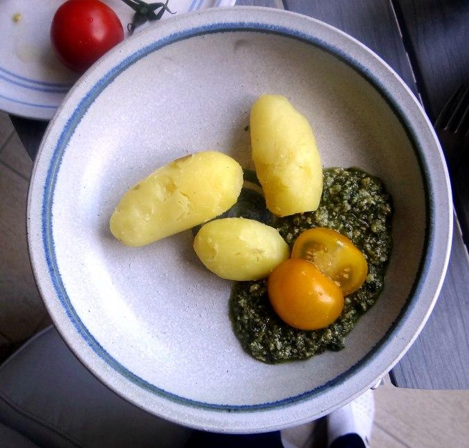 Neue Kartoffeln,Wildkräuter Pesto 9