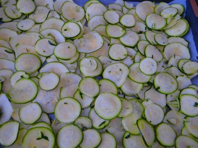 Lauwarmer Zucchinisalt,gedämpfte Möhren,Gurkensalat,Guacamole (9)