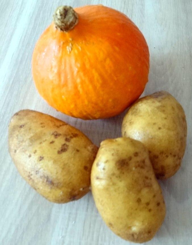 Kartoffel-Kürbis Gnocchis,Tomatensoße,Gurkensalat,vegetarisch (7)