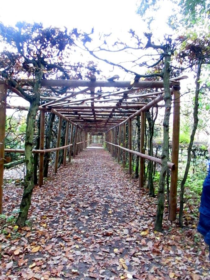 Belvedere im Herbst (35)
