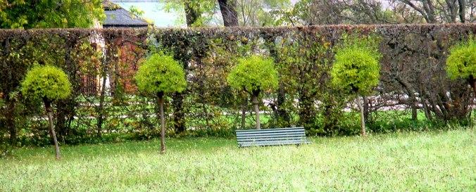 Belvedere im Herbst (6)