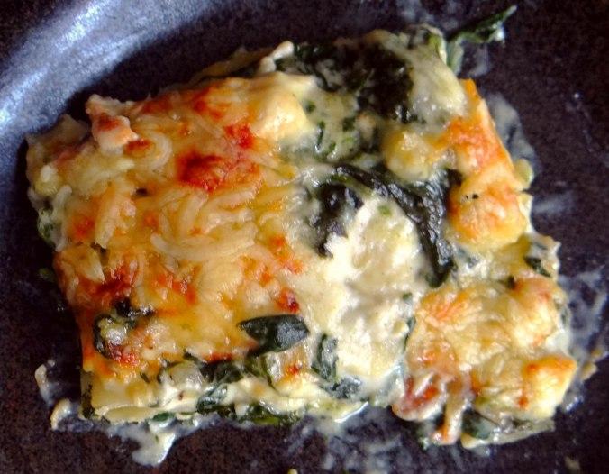 Spinat Lasagne (16)