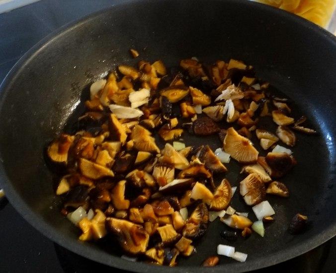 Austernpilze,Nudeln,Sauce (7)