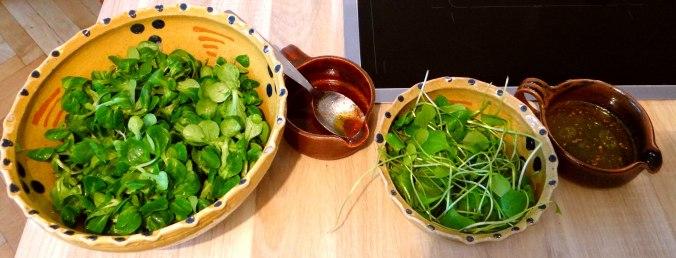Kürbispüree,Tofu,Salate (6)